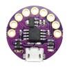 LilyTiny Development Board